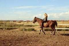 Blonde girl riding bay horse bareback Royalty Free Stock Photography