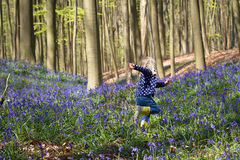 Blonde girl running through bluebells at Hallerbos woods Stock Images