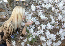 Blonde girl smelling white flowers of st Stock Image