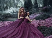A blonde girl stroking her brunette girlfriend`s hair. Girls like sisters are dressed in similar purple dresses, with. Lush skirts. Background of a blossoming stock photography
