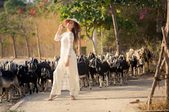 Blonde girl in Vietnamese dress stands against flock Royalty Free Stock Images