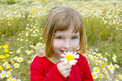 Blonde Gänseblümchenfrühlingsblume des kleinen Mädchens smeling Stockfotografie