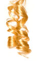 Blonde hair. Blonde corkscrew hair with white background Stock Photography