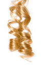 Blonde hair. Blonde corkscrew hair with white background Stock Image
