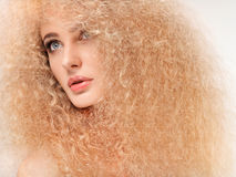 Blonde Hair. Beautiful Woman with Curly Long Hair. High quality Stock Photography