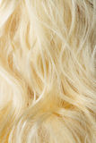 Blonde hair Royalty Free Stock Image