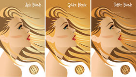 Blonde hair colors chart Stock Photos