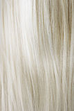 Blonde Hair Royalty Free Stock Photo