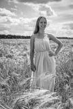 Blonde hermoso en un campo de trigo imagen de archivo