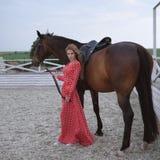 Blonde hermoso y atractivo con los pechos grandes en un vestido rojo y un caballo de trajes marrones fotos de archivo