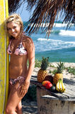 Blonde het Strand van de bikini Stock Afbeeldingen
