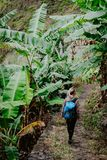 Blonde jonge vrouwen die met blauwe rugzak door banaanaanplanting op de trekkingsroute aan de vallei van Paul lopen Santo Antao Stock Fotografie