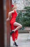 Blonde joven encantador en vestido sexy rojo con la flor roja en el pelo que presenta contra la pared de madera Mujer joven magní Foto de archivo libre de regalías