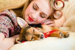 Blonde junge Frau mit Lockenwicklern schlafend mit ihrem kleinen Welpen Stockbild