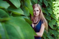 Blonde kaukasische Frau verlor unter Efeublättern Lizenzfreie Stockbilder