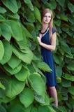 Blonde kaukasische Frau verlor unter Efeublättern Lizenzfreies Stockfoto