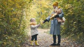 Blonde kleine Tochter mit ihrer Mama geht in Herbstpark - haben Sie lustiges und sammeln Sie Blätter, Abschluss oben Lizenzfreies Stockfoto