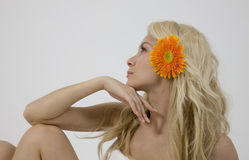 Blonde lady with gerbera. Isolated on white background Royalty Free Stock Photo