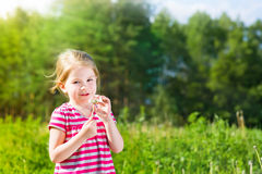 Blonde little girl with dandelion in sunlight Royalty Free Stock Photos
