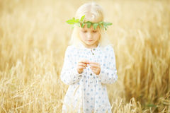 Blonde little girl in the field Stock Photo