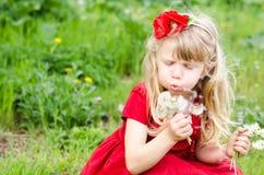 Blonde meisjes blazende paardebloem Stock Afbeeldingen