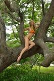 Blonde Mode-Modell-Aufstellung künstlerisch Stockfoto