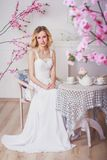 Blonde mooie bruid Stock Afbeelding