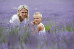 Blonde mother and her son together in lavender field Royalty Free Stock Photography