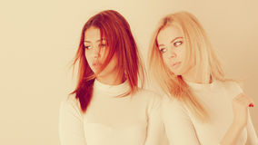 Blonde and mulatto girl together. Friends dialogue between cultures. Blonde and mulatto girl together. Two young beautiful ladies, one has bright hair, second Royalty Free Stock Image