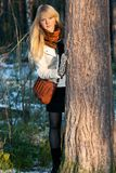 Blonde peers out for stem tree in autumn wood Royalty Free Stock Photo