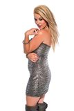 Blonde. Petite young blonde in a strapless silver lame dress Royalty Free Stock Photo
