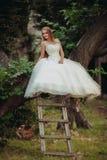 Blonde romantische leichte stilvolle schöne kaukasische Braut, die auf Baum sitzt Lizenzfreie Stockbilder