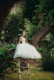 Blonde romantische leichte stilvolle schöne kaukasische Braut, die auf Baum sitzt Stockbild