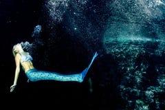 Blonde schöne Meerjungfrau und Seelöwe Lizenzfreies Stockfoto