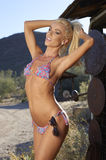 Blonde Schönheit im Bikini Lizenzfreies Stockbild