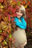 Blonde schwangere Frau des Herbstportraits Stockfotografie