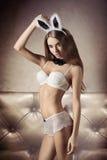 Blonde sexy rabbit Stock Photo