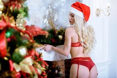 Blonde sexy Santa Clause in elegant panties, hat and bra Royalty Free Stock Images