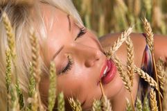 Blonde sitting on a field of wheat Royalty Free Stock Photos