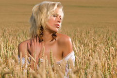 Blonde sitting on a field of wheat Royalty Free Stock Image