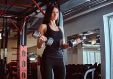 Blonde sportive female in sportswear doing exercise on biceps with dumbbells in a fitness club or gym. Blonde sportive female in sportswear doing exercise on royalty free stock images