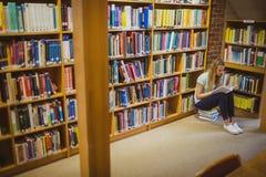 Blonde Studentenlesung beim Sitzen auf Büchern Stockfotos
