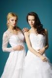 Blonde und Brunettebraut auf blauem Hintergrund Stockfoto