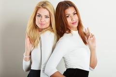 Blonde und dunkle Freunde zusammen Lizenzfreies Stockbild
