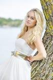 Blonde vrouw op boom Stock Foto's
