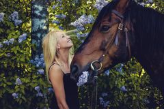 Blonde weibliche Aufstellung mit Pferd Stockfotos