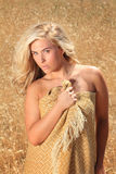 Blonde in wheat Stock Photos