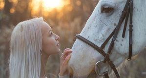 Blonde and white horse looking into each other's eyes Stock Photos