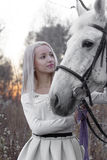 Blonde and white horse looking into each other's eyes Royalty Free Stock Photography