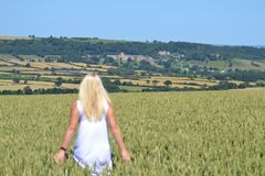 Ampleforth valley, Yorkshire stock image